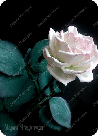 Добрый день,дорогие гости!Продолжаю осваивать так полюбившийся мной фоамиран. Сегодня у меня ирисы бородатые и розы на стебле.Цветы изготовлены для интерьерной композиции,чем буду еще дополнять букет - пока не знаю...размышляю.Вот он - мой красавчик!Такой хорошенький получился - аж пищу от удовольствия! Пока их три...хочу сделать еще несколько - другого цвета. Ирис бородатый изготовлен по МК чудесной мастерицы Марины Ченцовой. Фоамиран иранский.Тонировка масляной пастелью.... фото 12