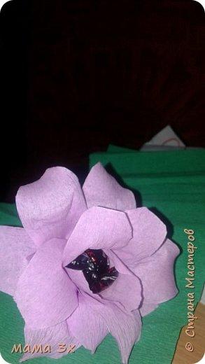 цветы... фото 1