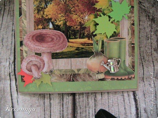 Всем доброго времени суток!!! Сегодня я к вам с осенью и мухоморами!!! И котами тоже!      Заказали открытку для мужчины дачнику и грибнику на 70-летие. Поэтому решила сделать её осенней фото 2