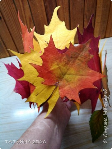 """Внучка в классе была """" Осенью"""". Нужно было сделать корону. Такая корона у меня получилась. Ребенка на тот момент не было , пришлось примерить на муже. фото 6"""