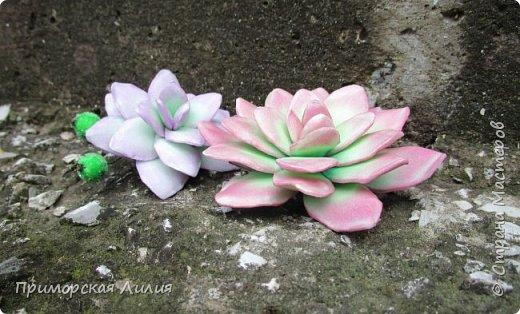 Давно хотела сделать именно эти цветы.  Делала из зефирного фоамирана, каждый цветок разным способом. фото 5