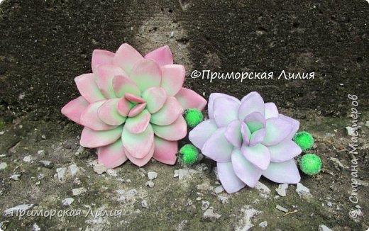Давно хотела сделать именно эти цветы.  Делала из зефирного фоамирана, каждый цветок разным способом. фото 1