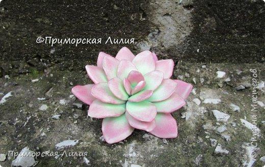 Давно хотела сделать именно эти цветы.  Делала из зефирного фоамирана, каждый цветок разным способом. фото 2
