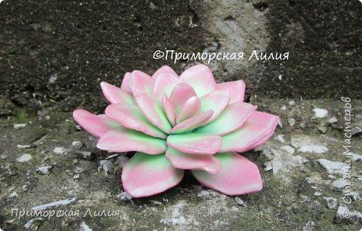 Давно хотела сделать именно эти цветы.  Делала из зефирного фоамирана, каждый цветок разным способом. фото 3