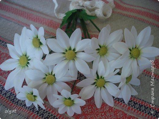 Добрый день! Вот и мои новые цветочки. Кашпо с цветочками на стену (дельфиниум, альстромерии, аквилегии и ромашки). фото 2