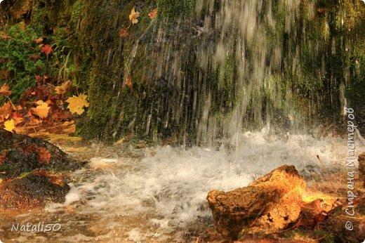 Доброго всем вечера!! За окном дождь..осень.. Захотелось поделиться своими осенними наблюдениями и стихи Елены Ольховик очень сюда подошли. фото 1