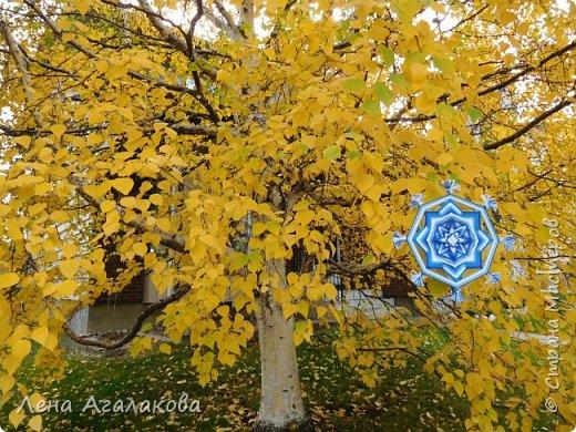 Сплелась еще одна мандала в синих тонах Славянский амулет - Божье око - самая древняя обережная славянская мандала . Ну и конечно я не удержалась чтобы не сфотографировать ее на фоне осенней красоты фото 3