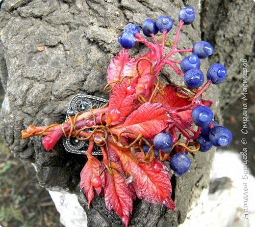 """Здравствуйте! Брошь """"Дикий виноград"""".  Моя новая работа из холодного фарфора.   Мастер-класс в обработке, будет в ближайшее время.  В мастер-классе покажу подробности лепки листьев, ягод винограда, а так же как красиво расписать масляными красками листья и ягоды. Покажу на какой клей я приклеиваю фурнитуру, чтоб она держалась надежно и качественно.   фото 1"""