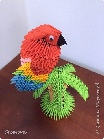 Попугай на пальме фото 7