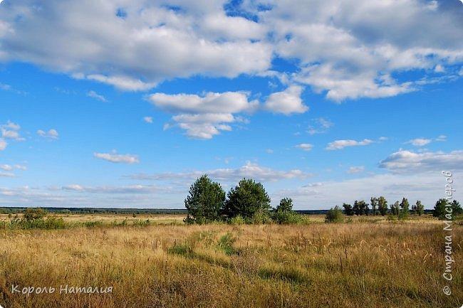Добрый вечер! Посчастливилось неделю назад погулять на природе. Было достаточно тепло, солнышко ласково светило и календарная осень никак не ощущалась, да и настроение было летнее. Но приехав домой и рассматривая фотографии, я заметила, что все-таки осень берет свое... Воздух стал прозрачней, а небо кажется выше и дальше, чем летом. Глубокий, ярко-синий его цвет по-особенному отражается в воде. И хотя кроны деревьев еще не усыпаны золотом осени, кое-где проступает желтизна... фото 2