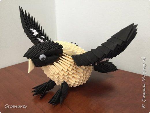 Птица фото 1