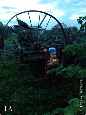 В детстве, как все, с нетерпением ждала каникулы, что бы ехать в гости к бабушке в деревню. Надеюсь, что внук Виталик будет спешить в страну своего детства. Дочь с мужем и внуком живут в другом городе, но достаточно регулярно навещают нас. фото 34