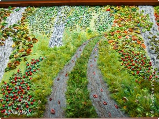 Осень в берёзовой роще. фото 2