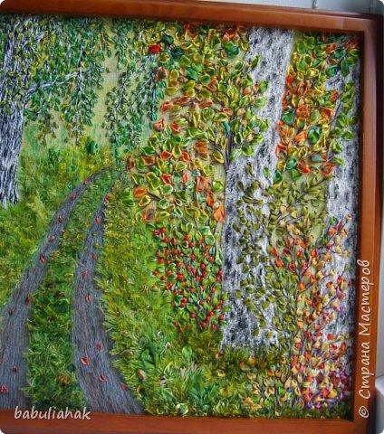 Осень в берёзовой роще. фото 3