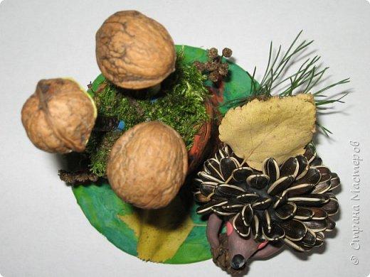 Осень, время поделок из природного материала...  Ёжик у пенька с грибами. В основе пенька пластиковый стаканчик от мороженого, и облеплен пластилином, мох; ёжик - киндер обмазан пластилином и украшен семенами подсолнечника; грибы (должны были быть опята, из палочек и шляпок от желудей, но в виду их отсутствия вышли другие грибочки) - березовые палочки, пластилин и скорлупа грецких орехов; в основании всей композиции диск компьютерный. фото 3