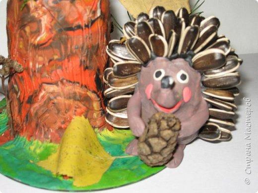 Осень, время поделок из природного материала...  Ёжик у пенька с грибами. В основе пенька пластиковый стаканчик от мороженого, и облеплен пластилином, мох; ёжик - киндер обмазан пластилином и украшен семенами подсолнечника; грибы (должны были быть опята, из палочек и шляпок от желудей, но в виду их отсутствия вышли другие грибочки) - березовые палочки, пластилин и скорлупа грецких орехов; в основании всей композиции диск компьютерный. фото 5
