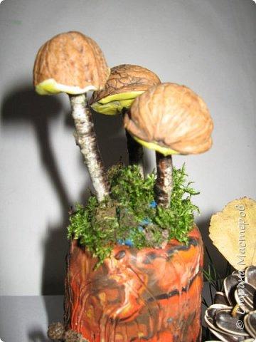 Осень, время поделок из природного материала...  Ёжик у пенька с грибами. В основе пенька пластиковый стаканчик от мороженого, и облеплен пластилином, мох; ёжик - киндер обмазан пластилином и украшен семенами подсолнечника; грибы (должны были быть опята, из палочек и шляпок от желудей, но в виду их отсутствия вышли другие грибочки) - березовые палочки, пластилин и скорлупа грецких орехов; в основании всей композиции диск компьютерный. фото 2