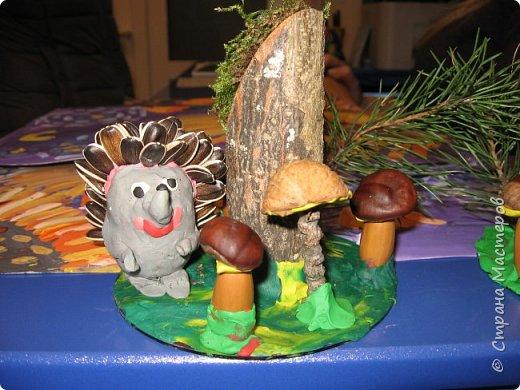 Осень, время поделок из природного материала...  Ёжик у пенька с грибами. В основе пенька пластиковый стаканчик от мороженого, и облеплен пластилином, мох; ёжик - киндер обмазан пластилином и украшен семенами подсолнечника; грибы (должны были быть опята, из палочек и шляпок от желудей, но в виду их отсутствия вышли другие грибочки) - березовые палочки, пластилин и скорлупа грецких орехов; в основании всей композиции диск компьютерный. фото 6