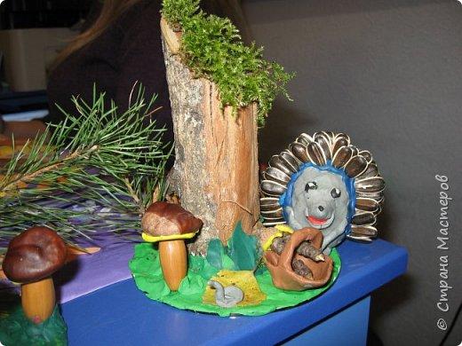 Осень, время поделок из природного материала...  Ёжик у пенька с грибами. В основе пенька пластиковый стаканчик от мороженого, и облеплен пластилином, мох; ёжик - киндер обмазан пластилином и украшен семенами подсолнечника; грибы (должны были быть опята, из палочек и шляпок от желудей, но в виду их отсутствия вышли другие грибочки) - березовые палочки, пластилин и скорлупа грецких орехов; в основании всей композиции диск компьютерный. фото 7