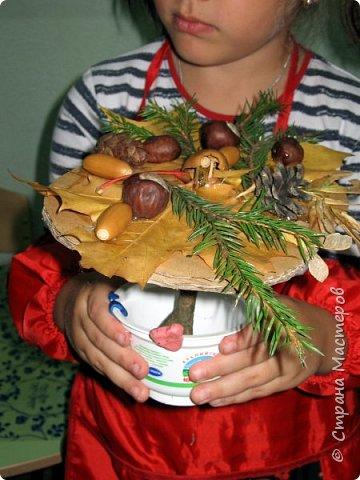 Осень, время поделок из природного материала...  Ёжик у пенька с грибами. В основе пенька пластиковый стаканчик от мороженого, и облеплен пластилином, мох; ёжик - киндер обмазан пластилином и украшен семенами подсолнечника; грибы (должны были быть опята, из палочек и шляпок от желудей, но в виду их отсутствия вышли другие грибочки) - березовые палочки, пластилин и скорлупа грецких орехов; в основании всей композиции диск компьютерный. фото 30