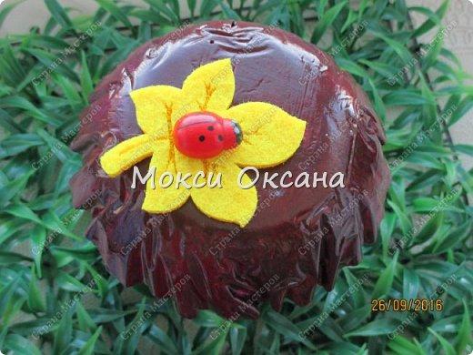 Спасибо Оля за мк!!!  http://stranamasterov.ru/node/509489?c=favorite_529 фото 5