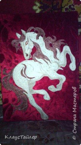 Вот такая лошадяка из трех цветов шпагата фото 2