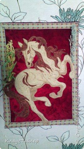 Вот такая лошадяка из трех цветов шпагата фото 4