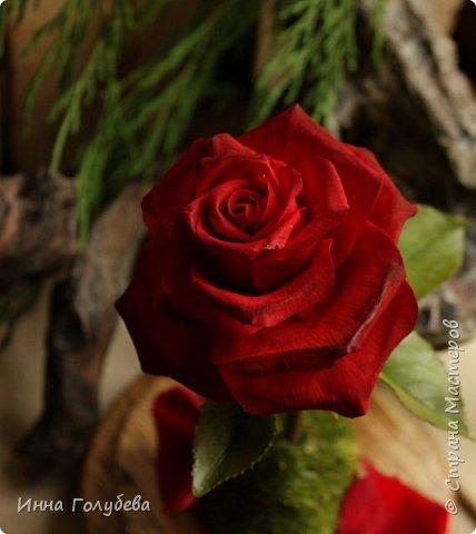 Продолжаю подготовку к фесту) Слепила вот такую розу из сказки. Получилась бархатистая розочка. После фестиваля отфоткаю процесс по тому,как достичь такого эффекта. фото 5