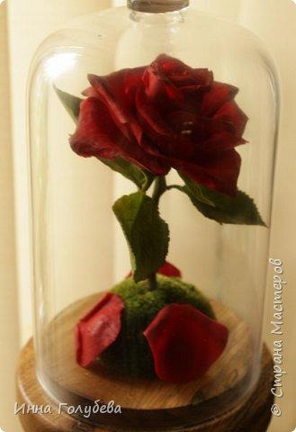 Продолжаю подготовку к фесту) Слепила вот такую розу из сказки. Получилась бархатистая розочка. После фестиваля отфоткаю процесс по тому,как достичь такого эффекта. фото 7