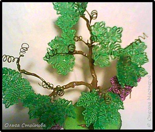 Виноградное дерево из бисера фото 7