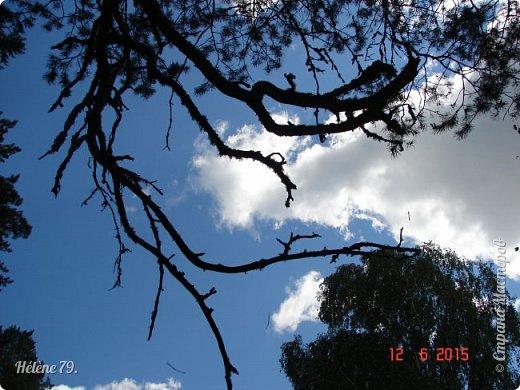 Облака, облака, Освещенные бока! Вы как чудо. Вы откуда? Из какого уголка? - Мы на море, На просторе Теплой ночью родились. Там туманом Утром рано Поднялись – и понеслись. Мы летели и глядели: Сколько в мире красоты! И домами, и садами Любовались с высоты. (С. Михалков) фото 5
