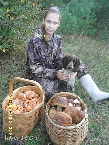 Вот такое семейство белых боровых попалось на 1 малюсенькой полянке ... найдешь один, а потом ищешь вокруг  мелочевку.... фото 38