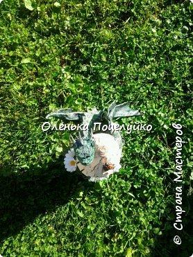 дракоша фото 2