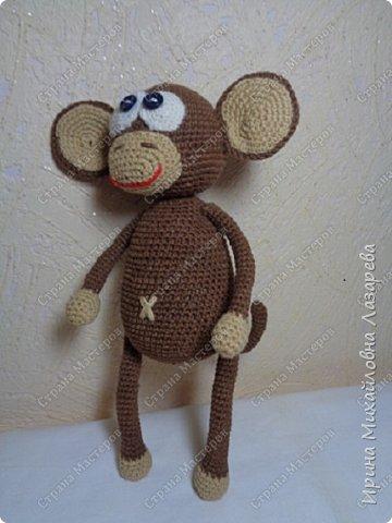 обезьянки фото 1