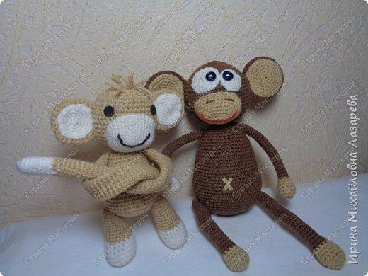 обезьянки фото 2