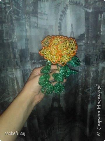 Первая роза из бисера. По  МК  светланка СС. фото 3