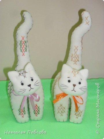 Флисовые котики фото 1