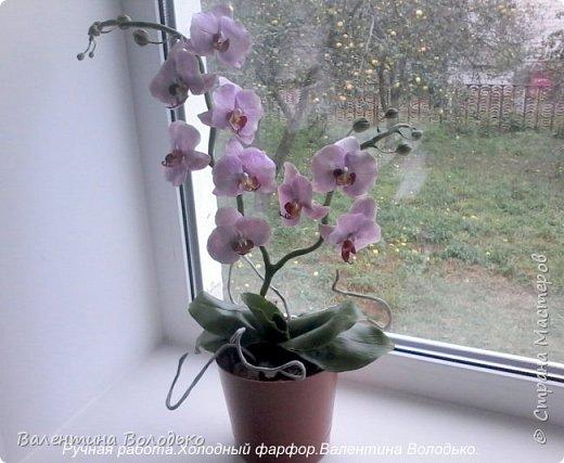 Здравствуйте дорогие мастера и мастерицы!!!!Слепилась вот такая осенняя орхидейка. фото 6