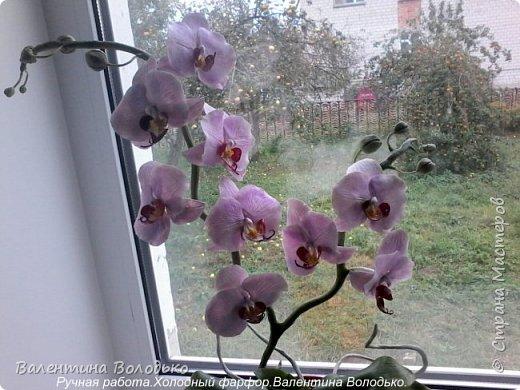Здравствуйте дорогие мастера и мастерицы!!!!Слепилась вот такая осенняя орхидейка. фото 8