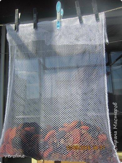Всем привет!!! А мы перед садом решили поднять иммунитет!!  фото 3