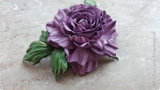 Есть роза дивная: она Пред изумлённою Киферой Цветёт, румяна и пышна, Благословенная Венерой. Вотще Киферу и Пафос Мертвит дыхание мороза, Блестит между минутных роз Неувядаемая роза…  (А.С.Пушкин) фото 11