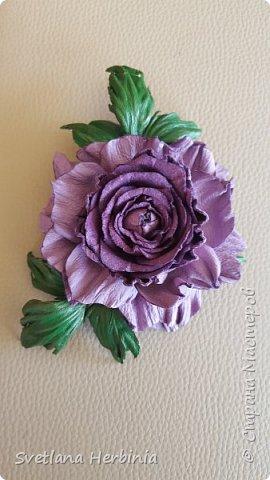 Есть роза дивная: она Пред изумлённою Киферой Цветёт, румяна и пышна, Благословенная Венерой. Вотще Киферу и Пафос Мертвит дыхание мороза, Блестит между минутных роз Неувядаемая роза…  (А.С.Пушкин) фото 12