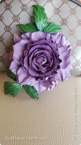 Есть роза дивная: она Пред изумлённою Киферой Цветёт, румяна и пышна, Благословенная Венерой. Вотще Киферу и Пафос Мертвит дыхание мороза, Блестит между минутных роз Неувядаемая роза…  (А.С.Пушкин) фото 13