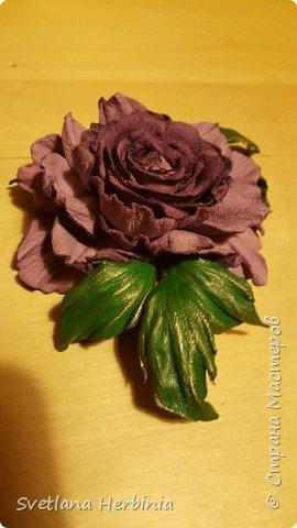Есть роза дивная: она Пред изумлённою Киферой Цветёт, румяна и пышна, Благословенная Венерой. Вотще Киферу и Пафос Мертвит дыхание мороза, Блестит между минутных роз Неувядаемая роза…  (А.С.Пушкин) фото 15