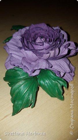 Есть роза дивная: она Пред изумлённою Киферой Цветёт, румяна и пышна, Благословенная Венерой. Вотще Киферу и Пафос Мертвит дыхание мороза, Блестит между минутных роз Неувядаемая роза…  (А.С.Пушкин) фото 16