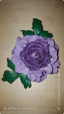 Есть роза дивная: она Пред изумлённою Киферой Цветёт, румяна и пышна, Благословенная Венерой. Вотще Киферу и Пафос Мертвит дыхание мороза, Блестит между минутных роз Неувядаемая роза…  (А.С.Пушкин) фото 17