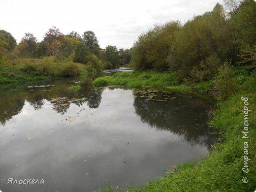 Сегодня осень побаловала нас теплым и солнечным деньком. На радостях отправились на природу- побродить по лесу и полюбоваться местными пейзажами. Дорога к реке. фото 9