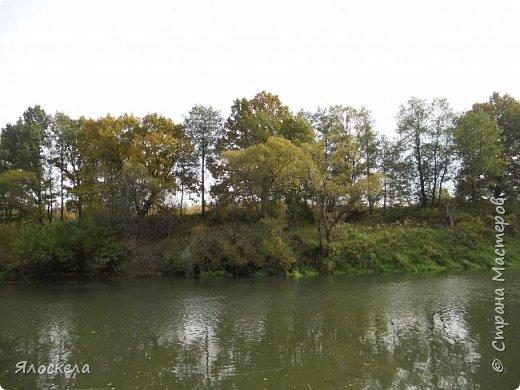 Сегодня осень побаловала нас теплым и солнечным деньком. На радостях отправились на природу- побродить по лесу и полюбоваться местными пейзажами. Дорога к реке. фото 10