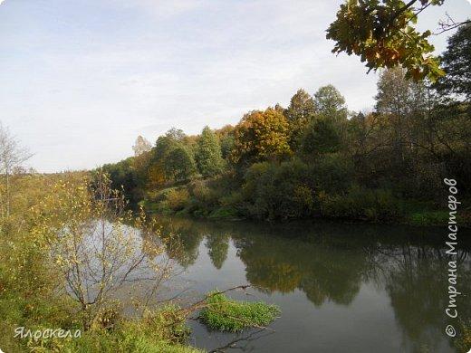 Сегодня осень побаловала нас теплым и солнечным деньком. На радостях отправились на природу- побродить по лесу и полюбоваться местными пейзажами. Дорога к реке. фото 12