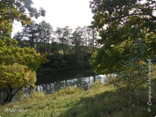 Сегодня осень побаловала нас теплым и солнечным деньком. На радостях отправились на природу- побродить по лесу и полюбоваться местными пейзажами. Дорога к реке. фото 14